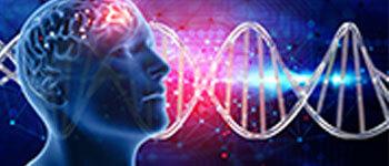 Gehirn DNA